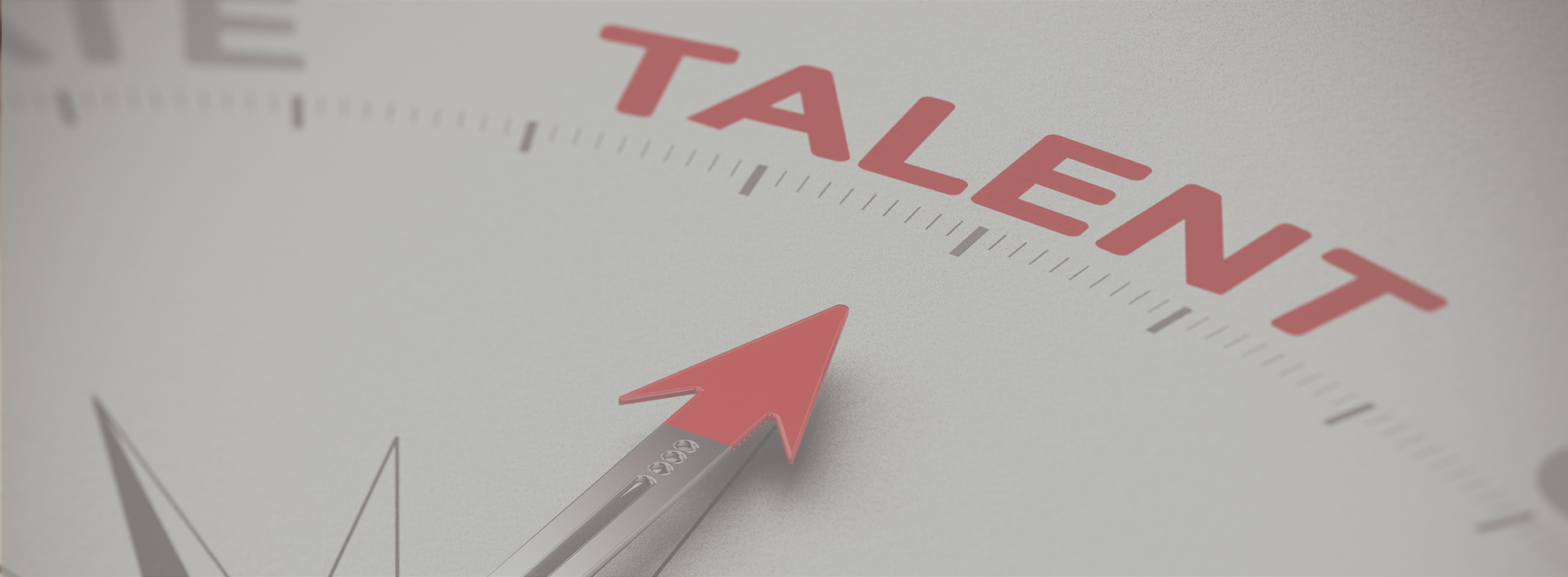 Talent - Advalco Anspruch Recruiting Personalberatung